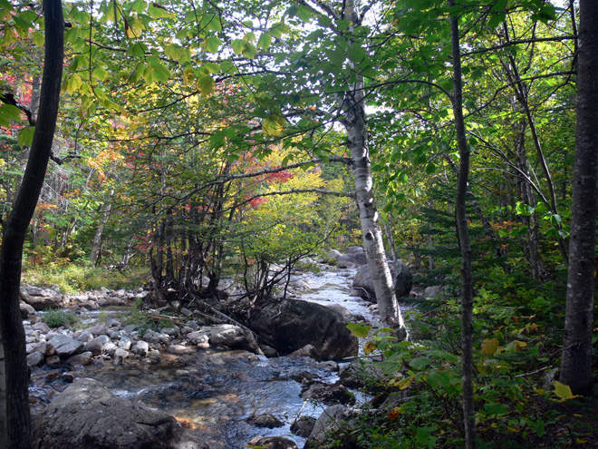 Mt. Katahdin's Roaring Brook trickles down the mountain