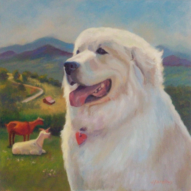 Vern the Great Pyrenees Dog
